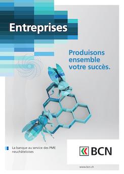 Vignette brochure Brochure Entreprises